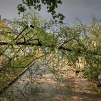 Unwetterbilder 14.08.2015 Kaufbeuren und Oberbeuren (7)