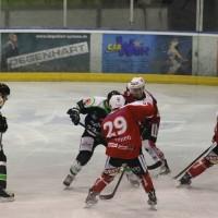 06-11-2015_Memmingen_Eishockey_Randale_Indians_ECDC_Hoechstadt_Polizei_Fuchs_new-facts-eu0001