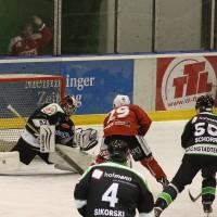 06-11-2015_Memmingen_Eishockey_Randale_Indians_ECDC_Hoechstadt_Polizei_Fuchs_new-facts-eu0016