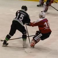 06-11-2015_Memmingen_Eishockey_Randale_Indians_ECDC_Hoechstadt_Polizei_Fuchs_new-facts-eu0019