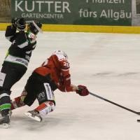 06-11-2015_Memmingen_Eishockey_Randale_Indians_ECDC_Hoechstadt_Polizei_Fuchs_new-facts-eu0021