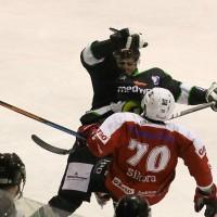 06-11-2015_Memmingen_Eishockey_Randale_Indians_ECDC_Hoechstadt_Polizei_Fuchs_new-facts-eu0025