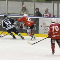 06-11-2015_Memmingen_Eishockey_Randale_Indians_ECDC_Hoechstadt_Polizei_Fuchs_new-facts-eu0033
