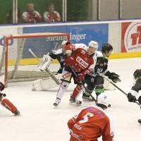 06-11-2015_Memmingen_Eishockey_Randale_Indians_ECDC_Hoechstadt_Polizei_Fuchs_new-facts-eu0037
