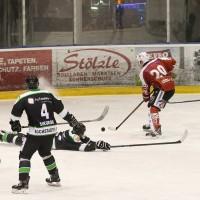 06-11-2015_Memmingen_Eishockey_Randale_Indians_ECDC_Hoechstadt_Polizei_Fuchs_new-facts-eu0041