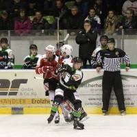 06-11-2015_Memmingen_Eishockey_Randale_Indians_ECDC_Hoechstadt_Polizei_Fuchs_new-facts-eu0066
