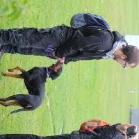 31-10-2015_Bayern_Oberallgaeu_BRK_Rettungshundestaffel_Eignungstest_Kuehnl_new-facts-eu003