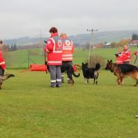 31-10-2015_Bayern_Oberallgaeu_BRK_Rettungshundestaffel_Eignungstest_Kuehnl_new-facts-eu050