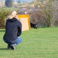 31-10-2015_Bayern_Oberallgaeu_BRK_Rettungshundestaffel_Eignungstest_Kuehnl_new-facts-eu056