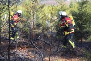 04-04-2016_Biberach_Tannheim_Rot_Waldbrand_Feuerwehr_Poppel20160404_0009