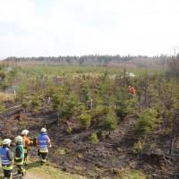 04-04-2016_Biberach_Tannheim_Rot_Waldbrand_Feuerwehr_Poppel20160404_0018