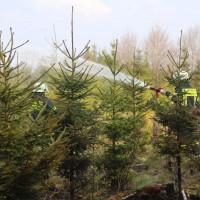 04-04-2016_Biberach_Tannheim_Rot_Waldbrand_Feuerwehr_Poppel20160404_0032