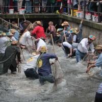 23-07-2016_Memminger-Fischertag-2016_Fischen_Kuehnl_0015
