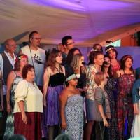 2017-07-29_Memmingen_Landesgartenschaugelaende_LGS-Joy-of-Voice_Sommernachtszauber_2017_Poeppel-0975