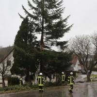 2018-01-04_Ravensburg_Bodenegg_Baum-droht-Haus_Feuerwehr_Unwetter_Poeppel_0011