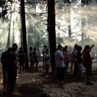 2018-06-07_IKARUS_Memmingen_2018_Festival_Openair_Flughafen_Forest_Camping_new-facts-eu_8005