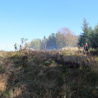 K1600_14.10.2018 Waldbrand Altensteig Bringezu (22)