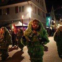 2020-02-21_Ochsenhausen_Nachtumzug_OHU_BX4A1729