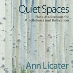 Quiet Spaces Cover Art Ann Licater