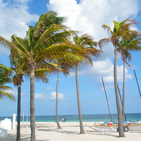 Main Attractions in Fort Lauderdale, FL