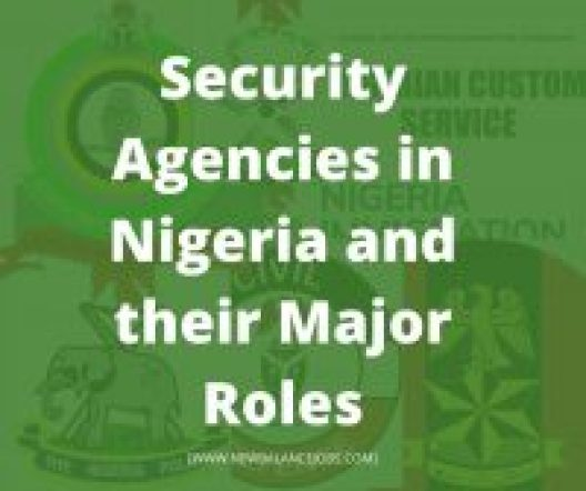 Security Agencies in Nigeria and their Major Roles