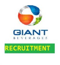 Giant Beverages limited recruitment