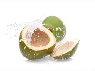 coconut-wa