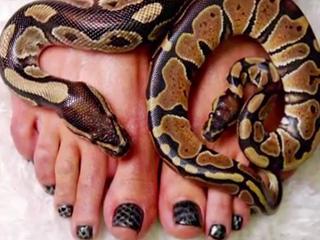 snakebeauty