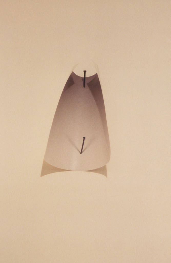 Vik Muniz, Two Nails, 1987_2016, photo cortesy of the artist and Galeria Nara Roesler