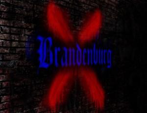 Brandenburg X: J.S. Bach's Exploration of the Viola da Braccio, the Violoncello and the Viola da Gamba