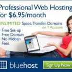 Bluehost – Best for Business Websites