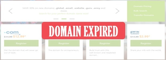What happens after domain names expire at GoDaddy?