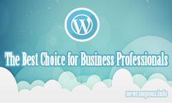 Why WordPress Is the Best Choice for Business Professionals