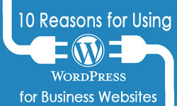 wordpress hosting for business