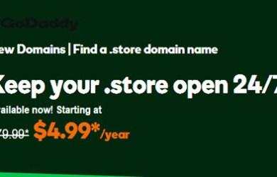 godaddy .store promotion