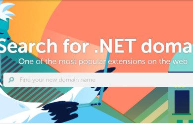 namecheap .net domain registration