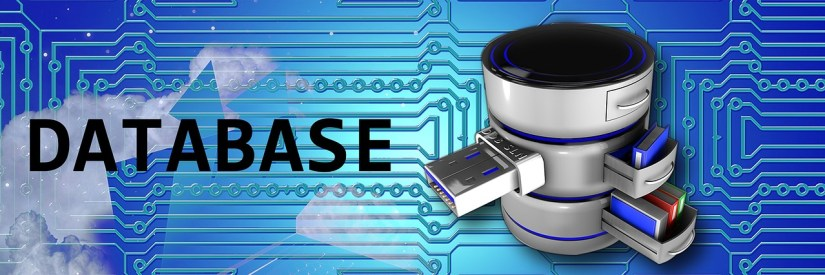 Local Database vs. Separate Database: Which One Is The Best For Your Business?