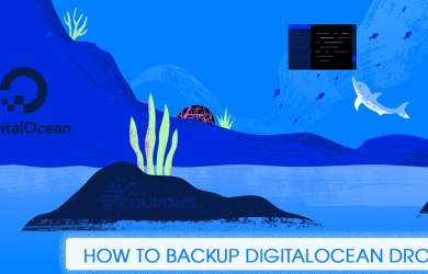 How To Backup Digitalocean Droplet
