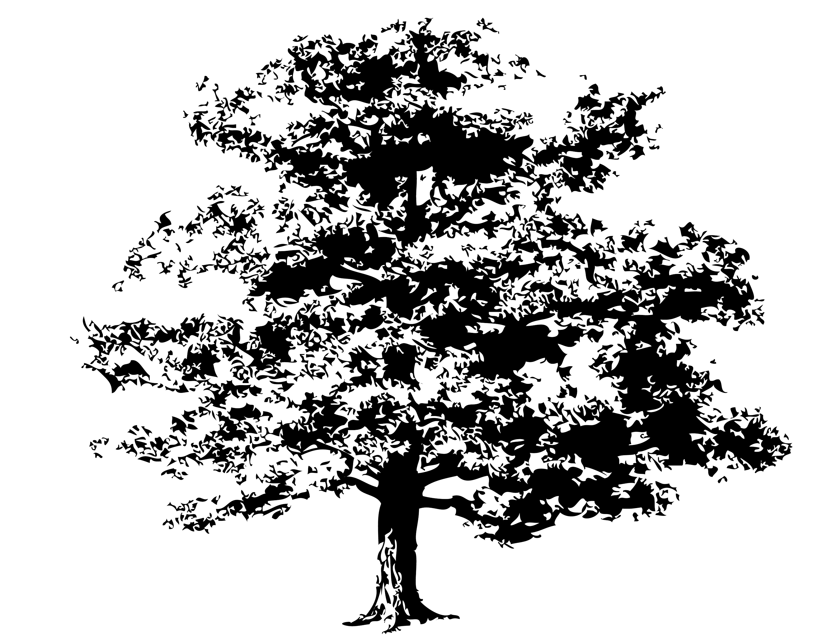 14 Oak Tree Vector Art Free Images