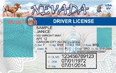 10 State ID Card PSD Template Images Texas Drivers License Template Texas Drivers License