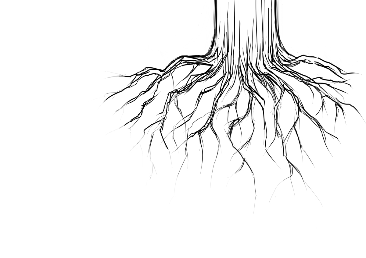 Drawn Tree With Roots Pictures To Pin