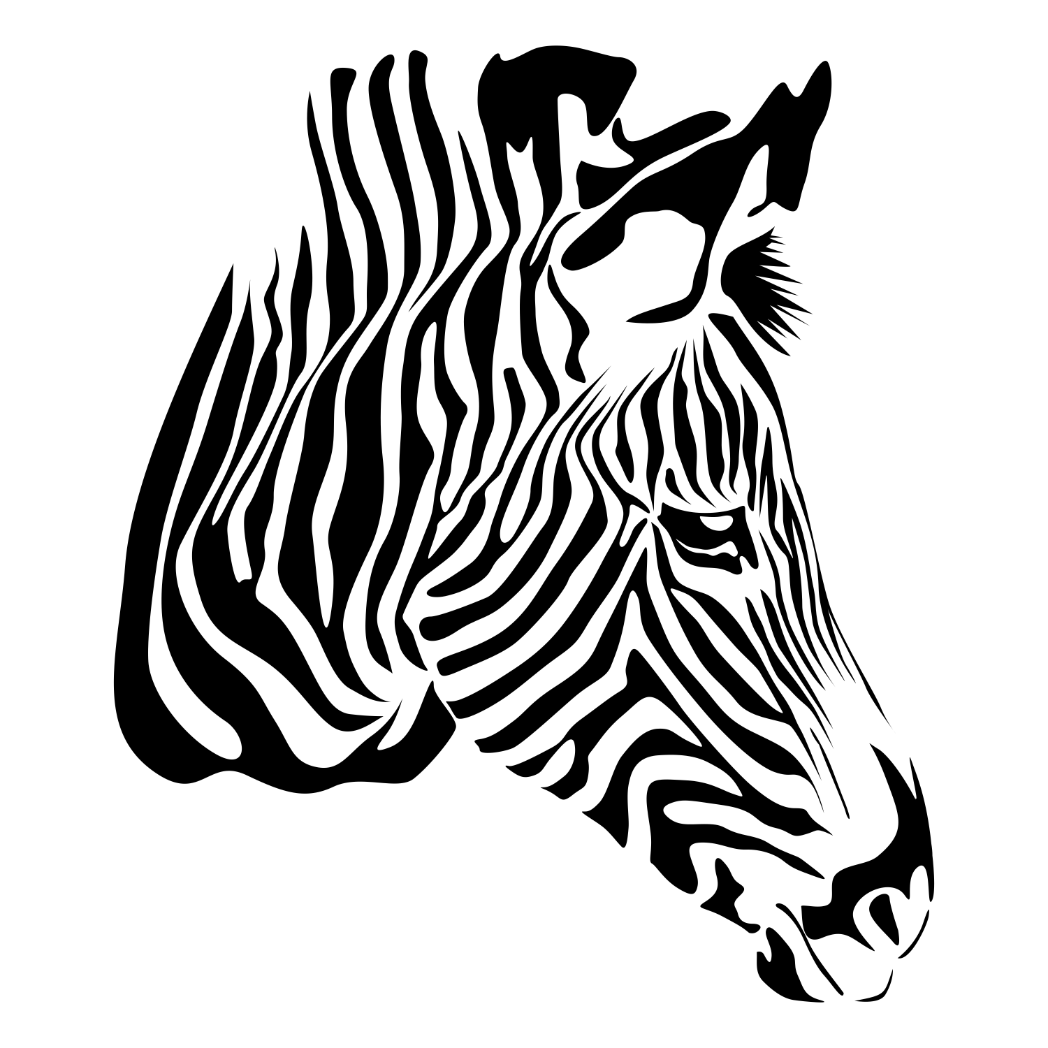 17 Black And White Zebra Vector Images