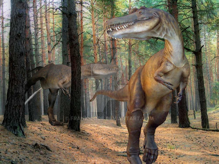 Albertosaurus Facts And Pictures