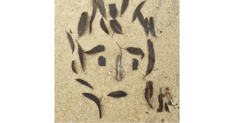 Burnt leaves on a beach, by Michael Donnelly