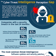 [Infographic] The Cyber Threat Intelligence Perception Gap