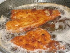 Tom's Fish