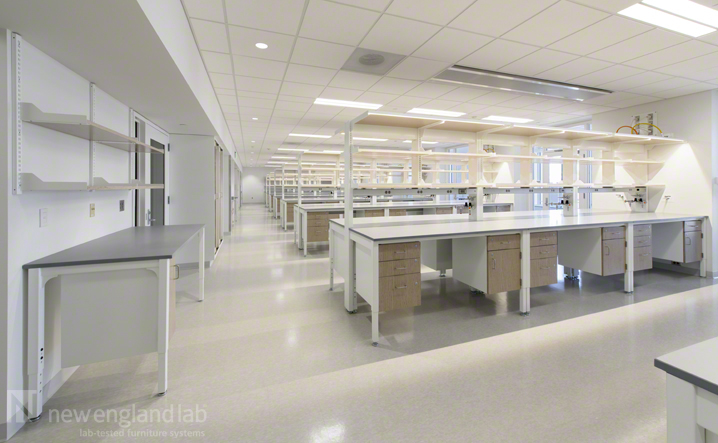 Boston University Center For Integrated Life Science