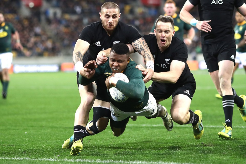 September 15, 2018: Aphiwe Dyantyi of South Africa scores a try during The Rugby Championship match between the New Zealand All Blacks and the South Africa Springboks at Westpac Stadium in Wellington, New Zealand. Photo: Phil Walter/Getty Images.