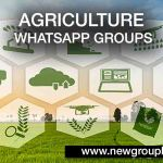 Agriculture WhatsApp Groups