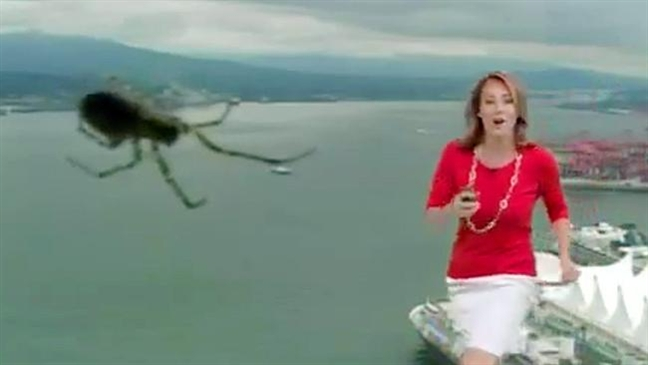 weather girl giant spider